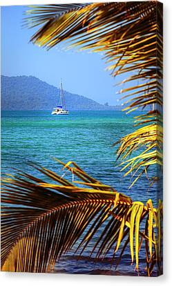 Canvas Print featuring the photograph Sailing Vacation by Alexey Stiop