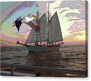 Concern Canvas Print - Sailing With A Pelican by Charles Shoup