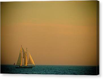 Sails Canvas Print by Sebastian Musial