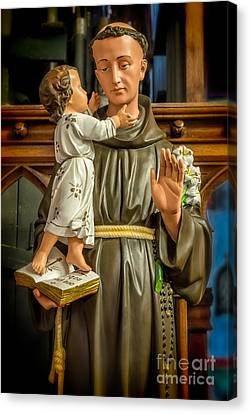 Saint Anthony Canvas Print by Adrian Evans