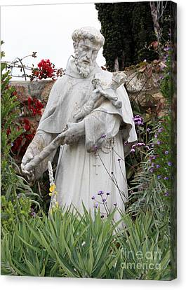 Saint Francis Statue In Carmel Mission Garden Canvas Print by Carol Groenen