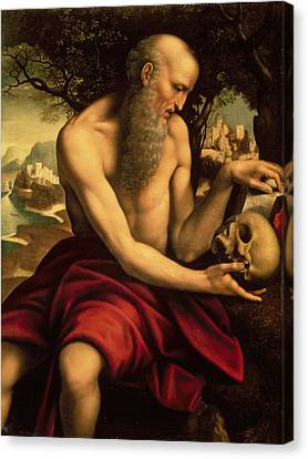 Saint Jerome Canvas Print by Cesare de Sesto