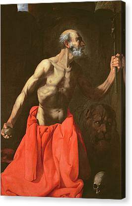 Saint Jerome Canvas Print by Francisco de Zurbaran