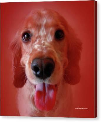 Buy Dog Art Canvas Print - Saint Shaggy Portrait 26 by Miss Pet Sitter