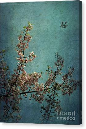 Sakura Canvas Print by Eena Bo