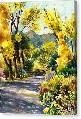 Salida Country Road Canvas Print by Anne Gifford