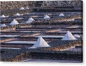 Salinas Del Carmen - Fuerteventura Canvas Print by Joana Kruse