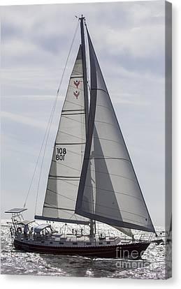 Canvas Print - Saling Yacht Valkyrie Charleston Sc by Dustin K Ryan
