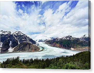 Salmon Glacier Canvas Print by Heidi Brand