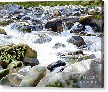 Salmon River Falls And Rocks Canvas Print by Sharon Freeman