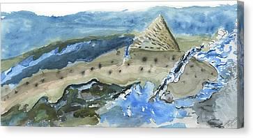 Salmon Surface Canvas Print