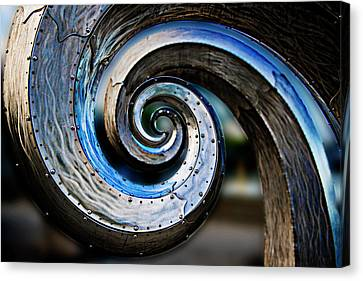 Salmon Waves 2 Canvas Print by Pelo Blanco Photo