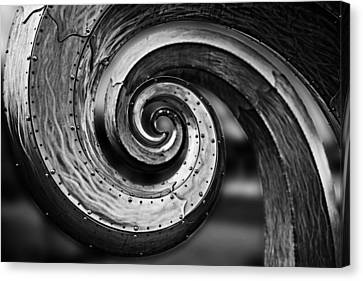 Salmon Waves Black And White 2 Canvas Print by Pelo Blanco Photo