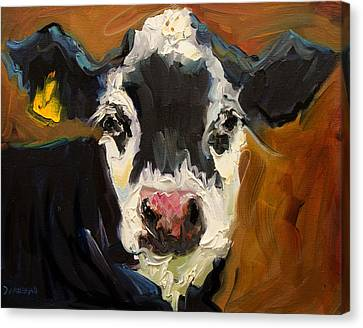 Salt And Pepper Cow Canvas Print