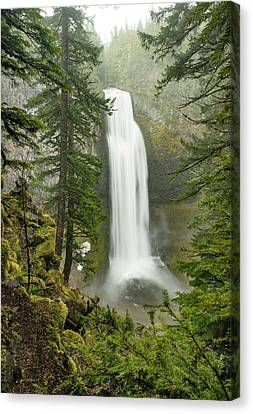 Salt Creek Falls Canvas Print