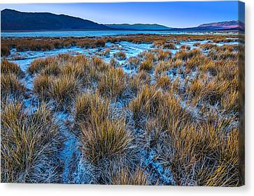 Salt Marsh Death Valley Canvas Print by Peter Tellone