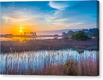 Chincoteague Canvas Print - Salt Marsh Sunrise II by Steven Ainsworth
