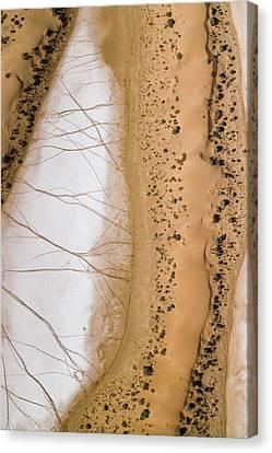 Salt Pans Deep In The Kalahari With 4x4 Canvas Print by Michael Fay