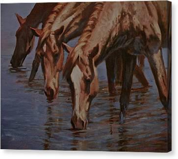 Art Of Mia Delode Canvas Print - Salt River Redheads by Mia DeLode