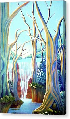 Saltwater Falls 2 Canvas Print by Barbara Stirrup