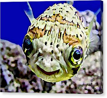 Saltwater Porcupinefish Canvas Print by Marvin Blaine
