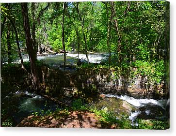 Saluda River Columbia Sc Canvas Print by Lisa Wooten
