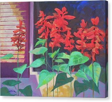 Salvia In The Windowbox Canvas Print by Carol Strickland