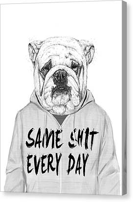Bulldogs Canvas Print - Same Shit... by Balazs Solti