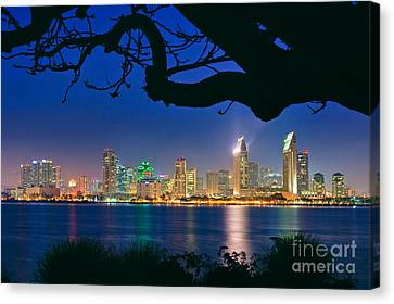 San Diego Skyline From Bay View Park In Coronado Canvas Print by Sam Antonio