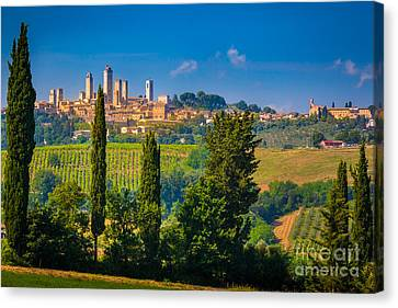 San Gimignano Canvas Print by Inge Johnsson