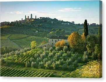 San Gimignano Morning Canvas Print by Brian Jannsen