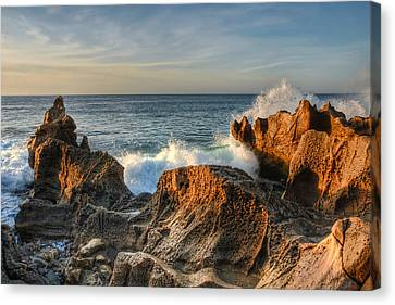 San Jose Del Cabo Early Morning Canvas Print by Rich Beer