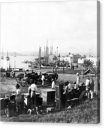 Puerto Rico Canvas Print - San Juan Harbor - Puerto Rico - C 1900 by International  Images