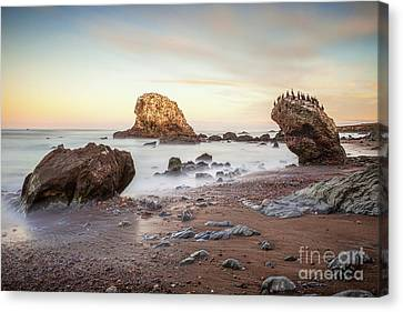 San Simeon State Beach California Canvas Print by Colin and Linda McKie