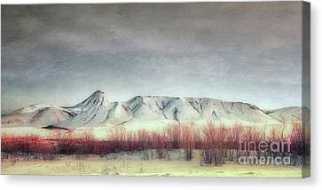 Sanctuary,  Canvas Print