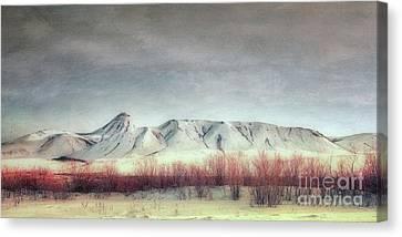 Sanctuary,  Canvas Print by Priska Wettstein