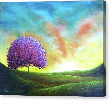 Sanctuary Canvas Print by Rachel Bingaman