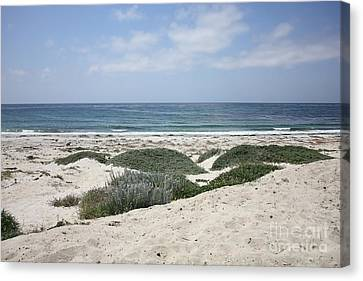 Sand And Sea Canvas Print by Carol Groenen