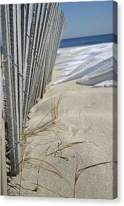 Sand And Snow Canvas Print by Mary Haber