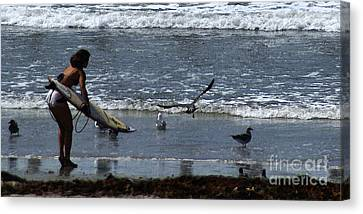Flying Seagull Canvas Print - Sand And Surf by Linda Shafer