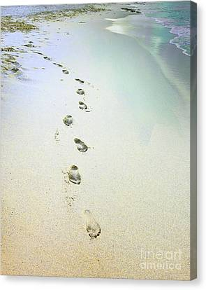 Sand Between My Toes Canvas Print by Betty LaRue