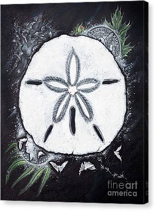 Sand Dollars Canvas Print by Scott and Dixie Wiley
