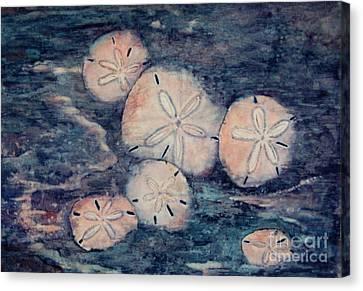 Sand Dollars Canvas Print