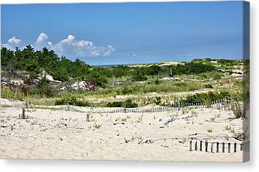 Sand Dune In Cape Henlopen State Park - Delaware Canvas Print by Brendan Reals
