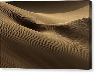 Sand Dune Canvas Print by Phil Crean