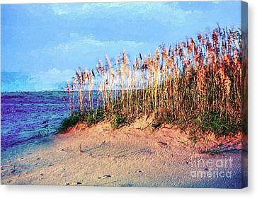 Sand Dune Sea Oats Sunrise Outer Banks Ap Canvas Print by Dan Carmichael