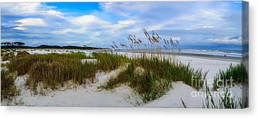 Sand Dunes And Blue Skys Canvas Print