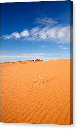 Sand Dunes In San Rafael Desert Canvas Print by Utah Images