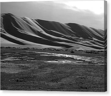 Sand Dunes Of The Gobi Canvas Print by Diane Height