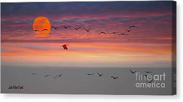 Sand Hill Cranes At Sunset/moonrise Canvas Print by Julie Dant